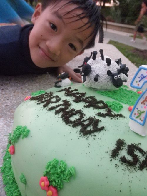 2010 nov shaun cake 009